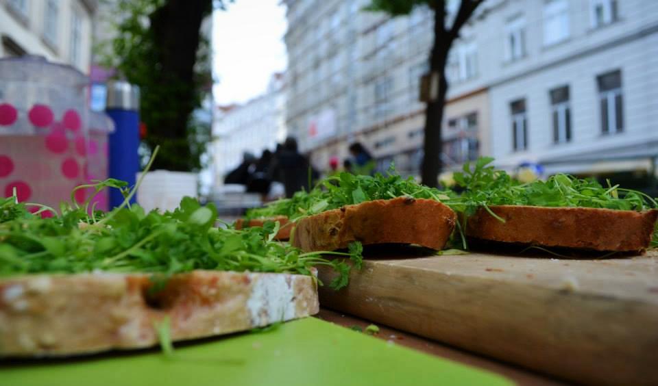 Gartenpolylog meets Salatpiraten – Kressebrot als Jause